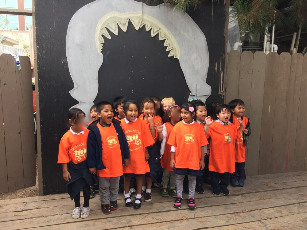 group of children on a field trip